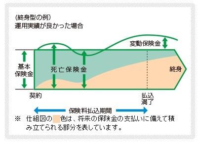 変額終身保険のイメージ図
