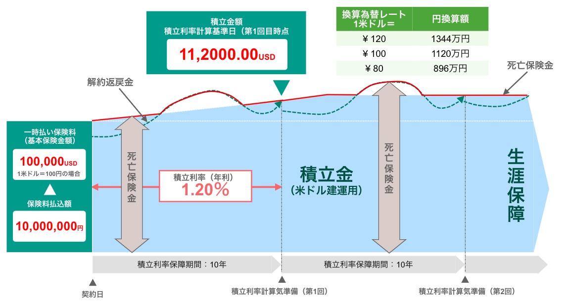 外貨建て保険のイメージ図